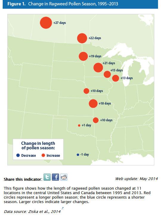 ragweed map from u s epa website