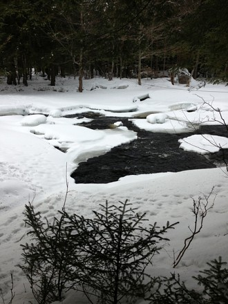 The west branch of the St. Regis River of the Wieczorek's property. This is where they would go to fish and bathe. Photo: Sarah Harris