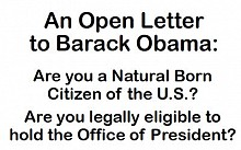 Birtherism? Bob Schulz funded a full-page ad in the Chicago Tribune, questioning Barack Obama's American citizenship.