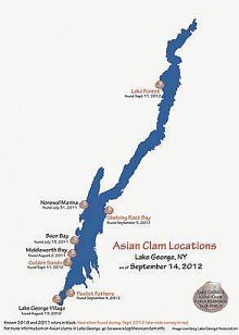 Asian clam locations. Image courtesy Lake George Association