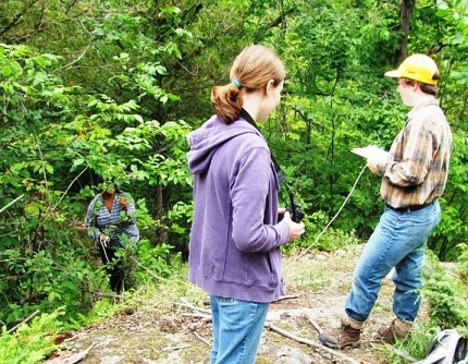 Clarkson University students Shelby Julia, Kathryn Lawson, and Amy Hait study the habitat of Golden Winged Warblers. Photo: Julie Grant