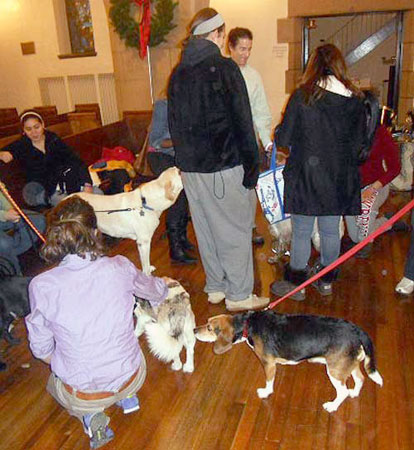 Dogs and students during Finals Week at St. Lawrence.