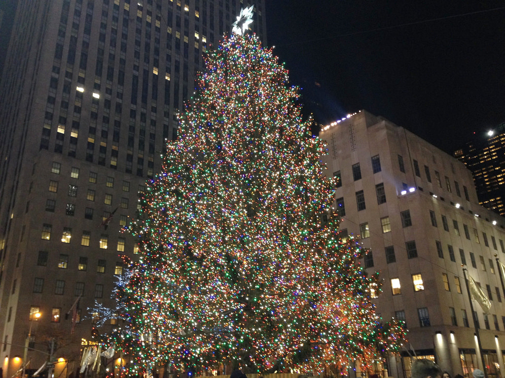 Christmas tree trends: What's popular and how local growers plan for it
