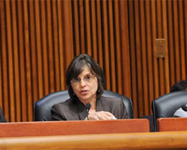 Assembly member Donna A. Lupardo of Binghamton at a hearing. Photo: NYS Assembly