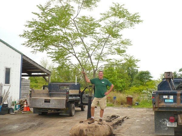 Seneca Nation Commits To Native Plant