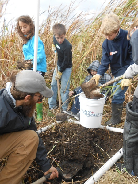 Matt Regan, researcher with SUNY's College of Environmental Science and Forestry, helps students churn up the dirt to expose the seed bank after removing cattails from a plot at Eel Bay, on Wellesley Island. Photo: Joanna Richards
