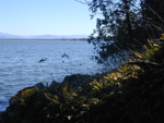 View of Lake Champlain from Split Rock area
