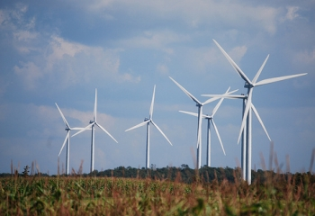 Part of the Maple Ridge Wind Farm. (Photo by David Chanatry.)