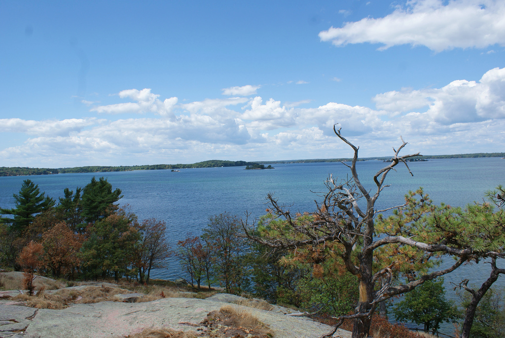Wellesley Island State Park. Photo: kezee , Creative Commons, some