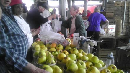 Apples at the Rochester Public Market. Photo by Kate O'Connell