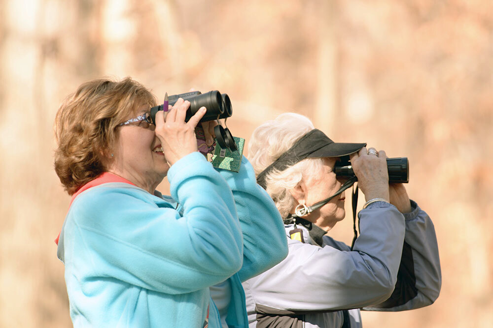 Birders watch and tally numbers from the roadside in Bloomingdale during the last bird count.
