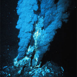 "P. fumarii live in deep ocean thermal vents such as this ""black smoker"" in the Mid-Atlantic Ridge. Photo: NOAA"