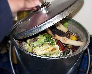Gail Brill's compost bucket