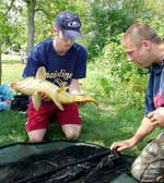 Matt Dawson, Hamilton, Ont. places a carp on a padded mat for weighing