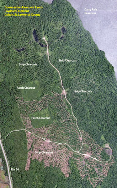 Protect the Adirondacks argues that too much clearcutting is already going on without enough monitoring by state officials. This image, posted by Protect on the group's website, was taken from the Bing mapping system.
