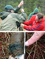 Paul Smiths College students pull sample from Adirondack peat bog.  (Source:  Curt Stager, PSC)