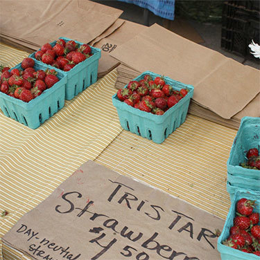 """Day-Neutral"" strawberries give a longer harvest season. Photo: <a href=""http://www.flickr.com/photos/51035796924@N01/3654599083/"">Wayne Surber</a>, Creative Commons, some rights reserved"