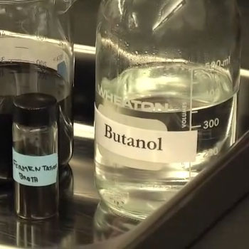 Butanol produced from wood is an alternative to corn-based ethanol. Photo: SUNY-ESF