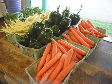 Food from the Farm: Eating Local in the North Country takes place Saturday, March 1, 2-5 pm in the Plattsburgh City Gym. Photo: Cornell Cooperative Extension