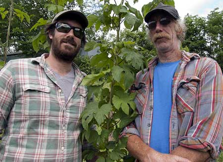Ian and Joe Birkett with a hops vine. Photos: Angela Evancie.