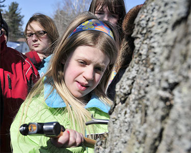 "Students from LP Quinn Elementary School in Tupper Lake learning to tap maple trees. Photo: <a href=""http://www.flickr.com/photos/thewildcenter/6816212070/"">The WIld Center</a>, CC <a href=""http://creativecommons.org/licenses/by-nc/2.0/deed.en"">some rights reserved</a>"
