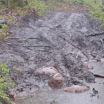 Alleged ATV damage <br />Source:  Adirondack Council