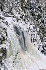 OK Slip Falls is one of the areas that the Nature Conservancy hopes to protect with the help of NY State.  (Source:  TNC, Carl Heilman photo)