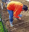A volunteer plants onions in Gouverneur's community garden last spring