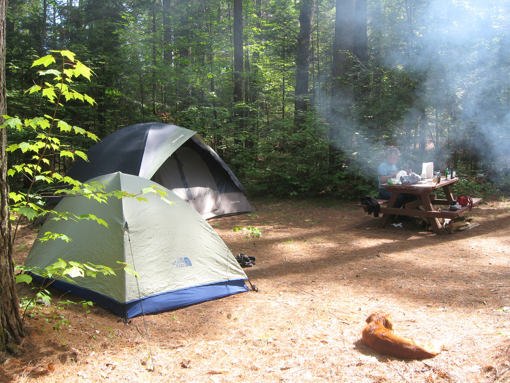 New York State campground. Photo: Bemep , Creative Commons, some