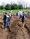 Cecilie Garden volunteers in Potsdam use hoes, shovels and their barehands to get the garden ready for planting.