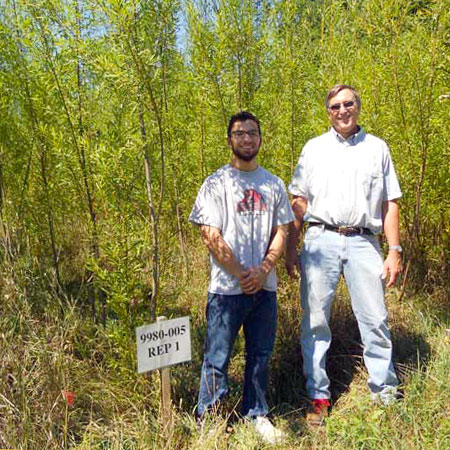 SUNY Potsdam biology major Stefan Sloma and professor Robert Ewy at the school's willow stand in Potsdam.